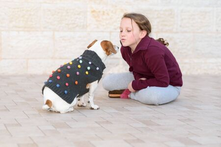 Little dog wearing a sweater playing and kissing with owner. Teenager girl having fun with cute and fashionable pet in backyard.Selective focus on kid. 写真素材