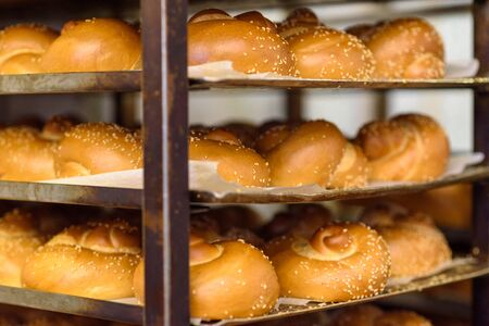 Fresh Challah for sale at local city bakery. Jewish traditional bread for shabbat. Stock Photo