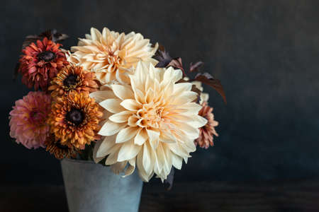 Beautiful autumn bouquet with dahlia flowers on a dark rustic background. Place for text. Stock Photo