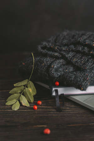 Cozy hand knitted sweater, notebook with rowan leaf and berries leaves on a dark background. Autumn background for slow homelife. Selective focus. Stock Photo