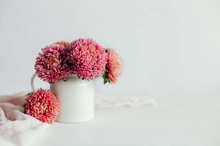 Beautiful autumn bouquet of a pink aster flowers on a white background. Place for text.