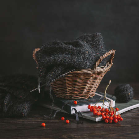Hand knitting with needles, yarn ball and rowan berries on a dark wooden background. Concept for handmade and hugge slow life. Stock Photo