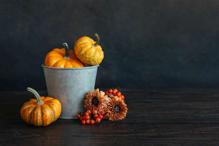Autumn background with pumpkins, rowan berries and flowers. Dark rustic wooden background. Place for text.
