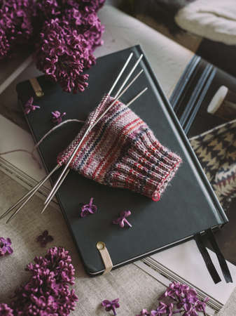Hand knitting sock with needles, yarn and branches of blossoming lilac. Concept for handmade and hygge slow life. Stock Photo