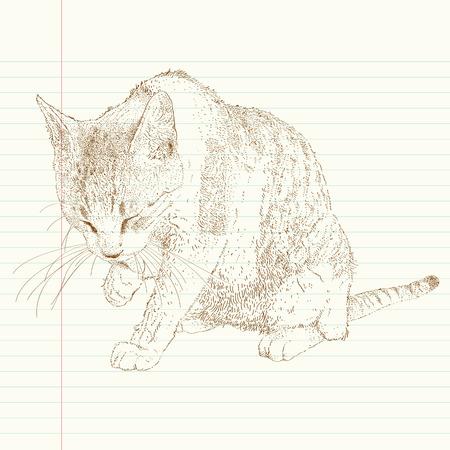 cat grooming: cat grooming herself, cute cat illustration Illustration