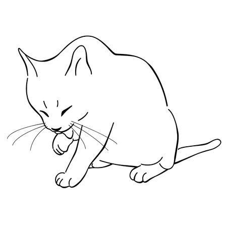cat grooming: cat grooming herself line, cute cat illustration