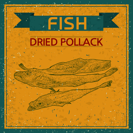walleye: dried walleye pollack sketch,  vintage background