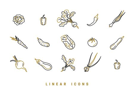 Icons vegetables in linear style. set food icon vector graphics Vector Illustration