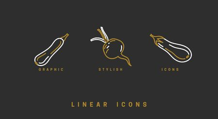 Icons vegetables in linear style. set food icon vector graphics