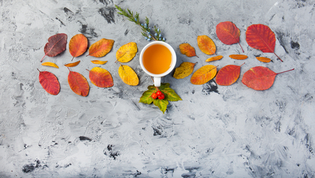 dark autumn still life with teaor coffee cup leaves pattern berries apple on the grey background