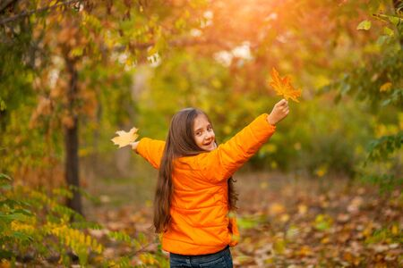 adorable little girl with autumn leave in the beauty park Zdjęcie Seryjne
