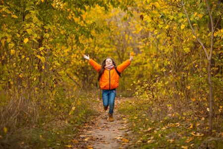 adorable little girl with autumn leave happy running in the beauty park Zdjęcie Seryjne