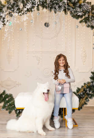 Little cute girl with Christmas gift and smiling samoyed dog in a beautiful studio with festive decor, spruce arch and Christmas decorations