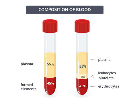 Composition of blood, the percentage of formed elements of blood, vector concept.