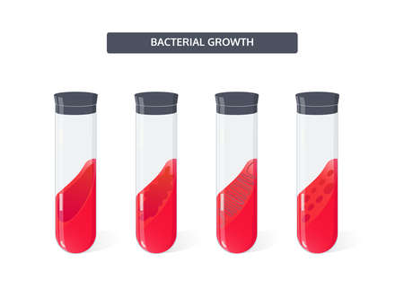 Growth of bacteria colony in the culture medium in the test tubes, vector microbiology concept.