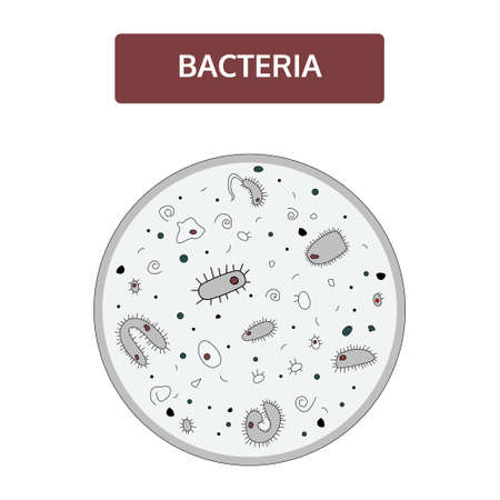 Doodle style, handdrawn drawing. Black and white bacteria with a dark red nucleus on a gray background under a microscope. Medical flat concept.