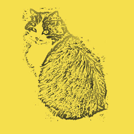 Domestic purebred fluffy cat in gradients of gray color isolated on yellow background. Portrait of a lovely pet. Can be applied to paintings, T-shirt prints, bags, wallpapers and more.
