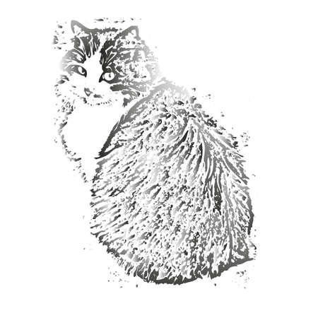 Portrait of a domestic gray cat sitting isolated on a white background close-up. Gray long fluffy fur, cute cat face, small ears.Illustration for design, decor.