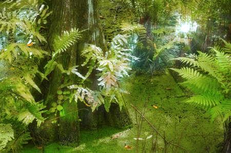 strangler: Light shining through the bog