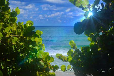 glimpse of paradise photo
