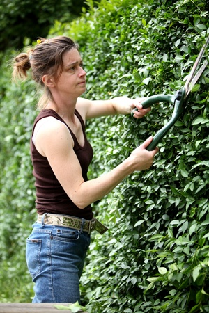 Young woman cutting the hedge with a pair of garden shears photo