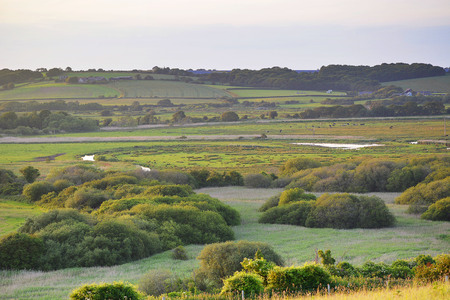 Oxbow river meandering across lush flood plains during the summer months at Brading Marsh on the Isle of Wight, UK.