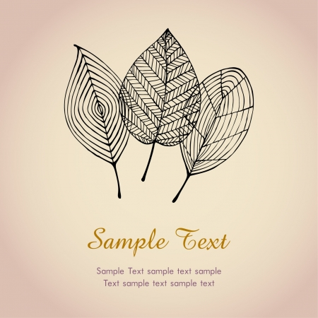 autumn garden: Autumn text background template with leaves  Illustration stylized graphic autumn leaves