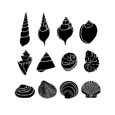 Set with silhouettes seashells