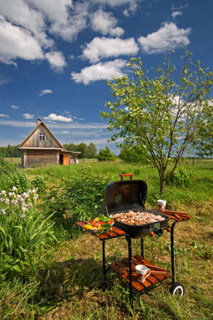 Picnic Barbeque in fine weather in the garden photo