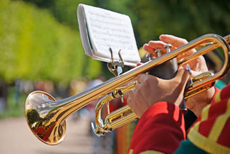 Parade Soldier with a Trumpet Stock Photo - 1327854
