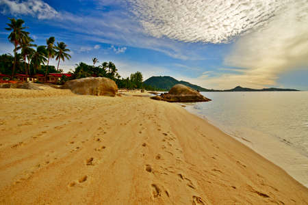 Deserted morning beach with golden sand and footprints photo