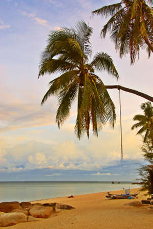Relaxing Sunset Beach and Palm view Stock Photo - 2045078