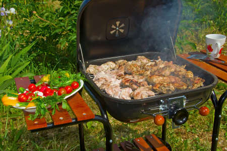 barbecues: Preparing BBQ in the garden Stock Photo