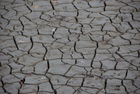 devastated land: Dry Gray Mud Background Texture Stock Photo