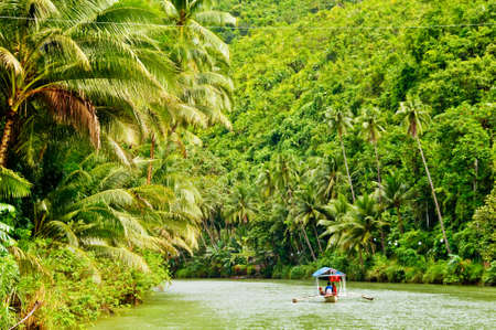 tropical rainforest: Cruising boat on Rainforest River