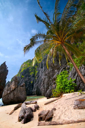 Exotic Wild Tropical Beach Scenery with Cliffs  photo