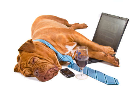 funny glasses: Hardworker Fell asleep at the laptop