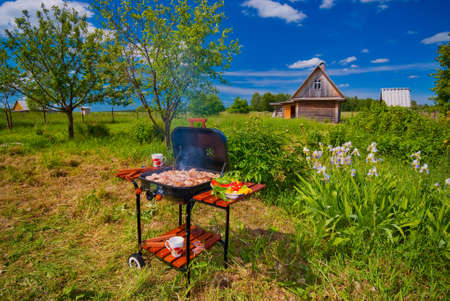 bbq picnic: Have a break - BBQ in the Garden. Stock Photo