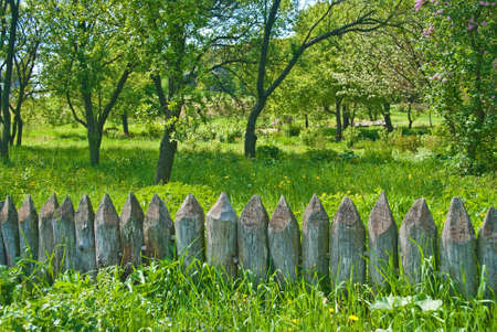 flowerses: old wooden fence in a spring meadow. Stock Photo