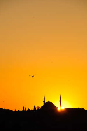 prayer tower: Silhouette of a Mosque in Istanbul with Birds and Setting sun