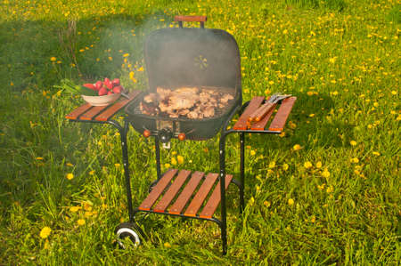 garden barbecue: Barbeque on a summer lawn