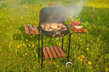Barbeque in the garden outdoors photo