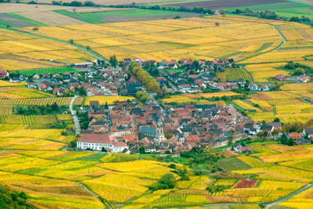 Small vilage in the middle of autumn vineyards. photo