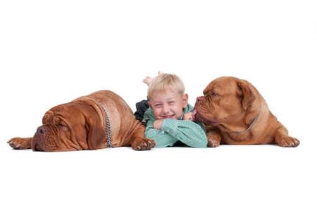 perros jugando: Sonriente ni�o acostado th efloor entre dos perros grandes