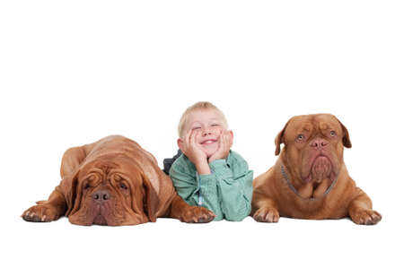 Smiling boy and two big dogs lying on the floor