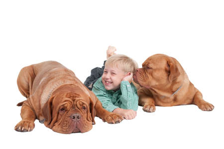 Smiling boy and two big dogs playing photo