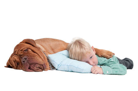 Sleepy boy lying on the floor with his dogue de bordeaux photo