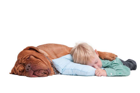 Big dogue de bordeaux hugging a 7 years old boy while sleeping on the floor photo