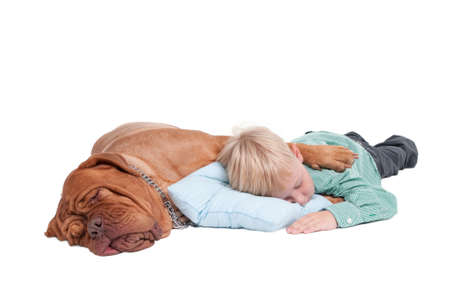 two floors: Big dogue de bordeaux hugging a small boy while sleeping on the floor Stock Photo