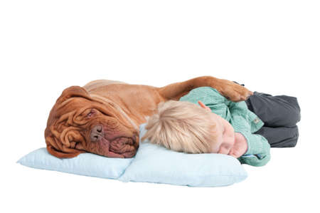 Big dogue de bordeaux and small boy sleeping on the floor photo
